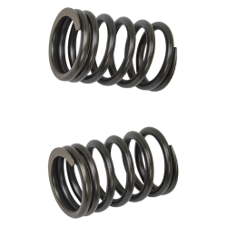 G- Valve Spring 2V Outer Set (139QMB, GY6)
